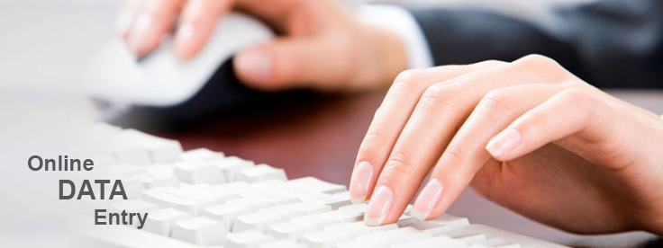 Online Data Entry Services Company